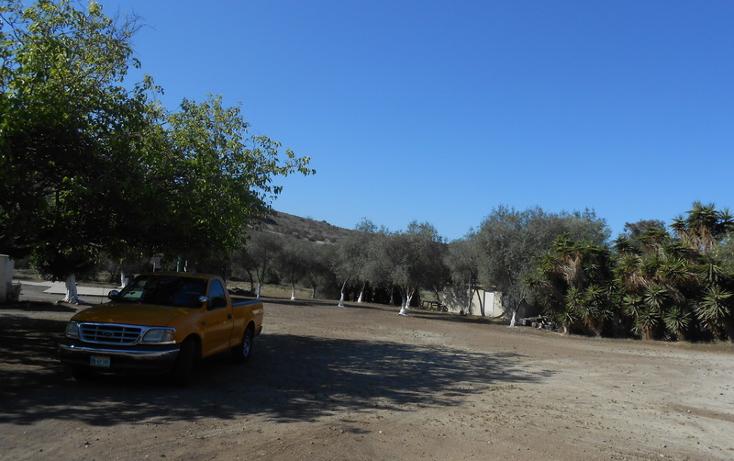 Foto de casa en venta en  , brisa del mar, ensenada, baja california, 1609045 No. 14