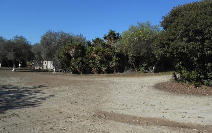 Foto de casa en venta en  , brisa del mar, ensenada, baja california, 1609045 No. 15