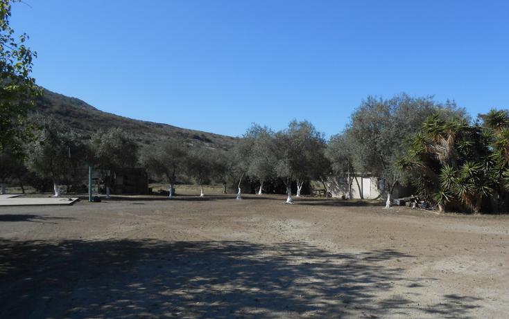 Foto de casa en venta en  , brisa del mar, ensenada, baja california, 1609045 No. 16