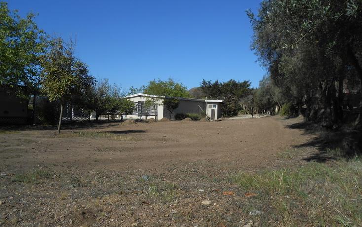 Foto de casa en venta en  , brisa del mar, ensenada, baja california, 1609045 No. 32