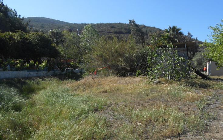 Foto de casa en venta en  , brisa del mar, ensenada, baja california, 1609045 No. 33