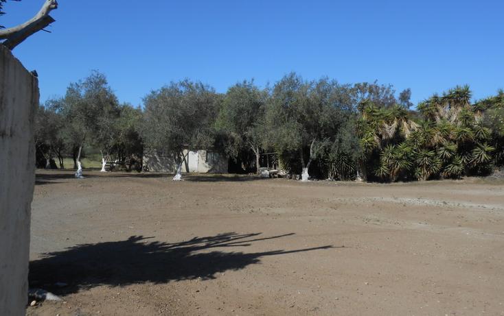 Foto de casa en venta en  , brisa del mar, ensenada, baja california, 1609045 No. 40