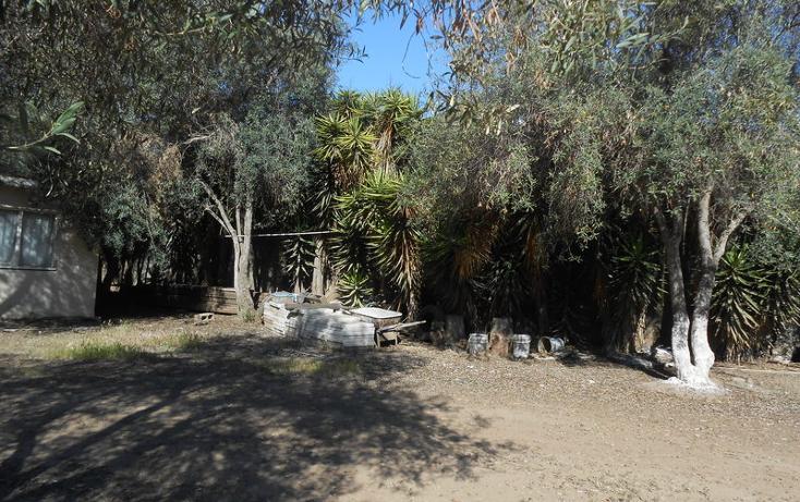 Foto de casa en venta en  , brisa del mar, ensenada, baja california, 1609045 No. 45