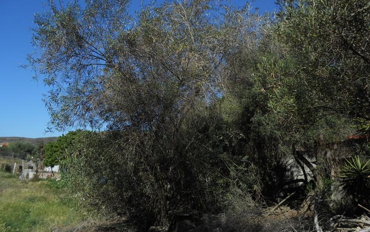 Foto de casa en venta en  , brisa del mar, ensenada, baja california, 1609045 No. 47