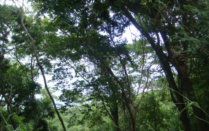 Foto de terreno habitacional en venta en  , brisas del marqu?s, acapulco de ju?rez, guerrero, 1257991 No. 01
