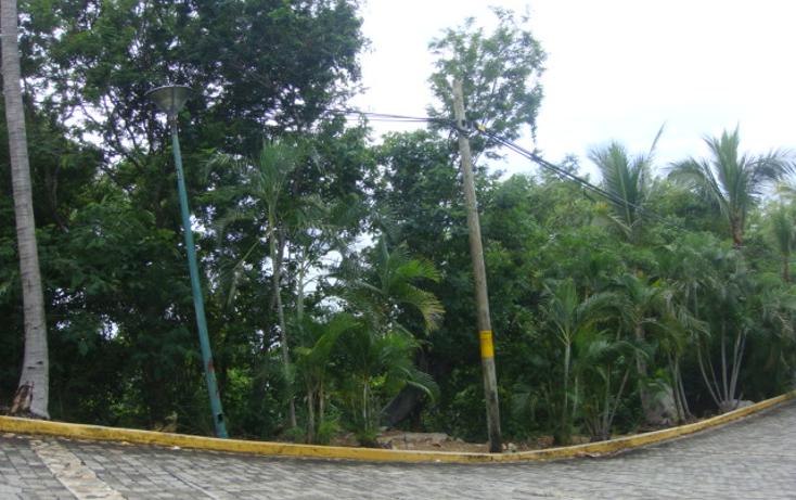 Foto de terreno habitacional en venta en  , brisas del marqu?s, acapulco de ju?rez, guerrero, 1257991 No. 06