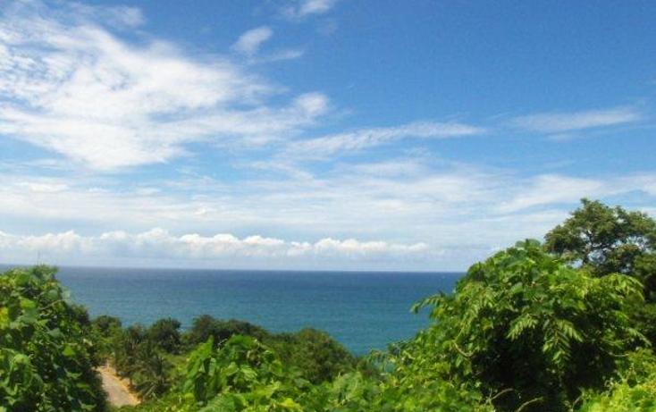 Foto de terreno habitacional en venta en  , brisas del marqu?s, acapulco de ju?rez, guerrero, 1601766 No. 05