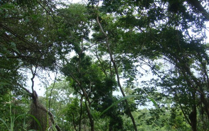 Foto de terreno habitacional en venta en  , brisas del marqués, acapulco de juárez, guerrero, 1700622 No. 04