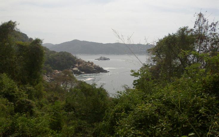 Foto de terreno habitacional en venta en  , brisas del marqu?s, acapulco de ju?rez, guerrero, 1864020 No. 02