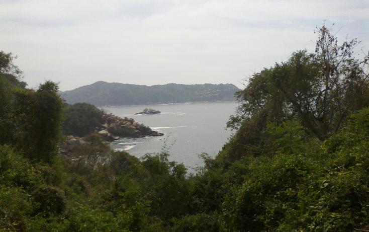 Foto de terreno habitacional en venta en  , brisas del marqu?s, acapulco de ju?rez, guerrero, 1864020 No. 03