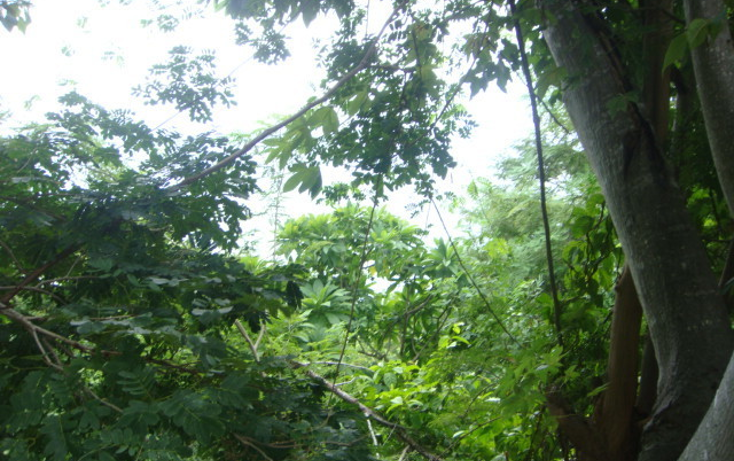 Foto de terreno habitacional en venta en  , brisas del marqu?s, acapulco de ju?rez, guerrero, 1864102 No. 07
