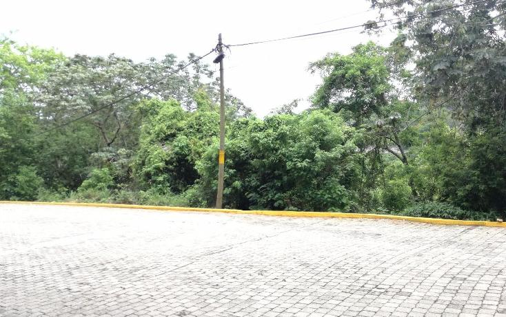Foto de terreno habitacional en venta en  , brisas del marqués, acapulco de juárez, guerrero, 3426103 No. 03