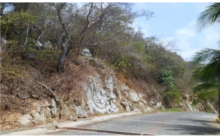 Foto de terreno habitacional en venta en  , brisas del marqués, acapulco de juárez, guerrero, 896107 No. 05