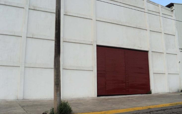 Foto de nave industrial en renta en  , bruno pagliai, veracruz, veracruz de ignacio de la llave, 1119165 No. 12