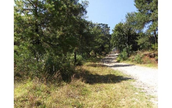 Foto de terreno habitacional en venta en buena vista botide remato terreno de casi 4 hectareas, espíritu santo, jilotzingo, estado de méxico, 379338 no 02