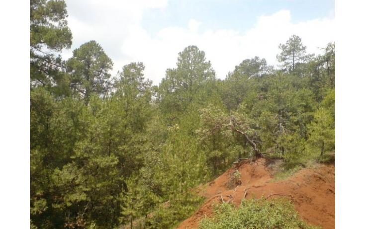 Foto de terreno habitacional en venta en buena vista botide remato terreno de casi 4 hectareas, espíritu santo, jilotzingo, estado de méxico, 379338 no 03