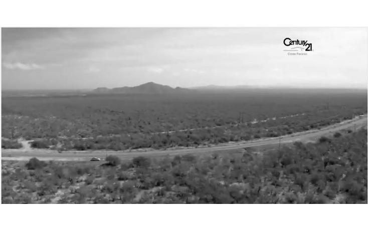 Foto de terreno habitacional en venta en  , buena vista, los cabos, baja california sur, 1756932 No. 02