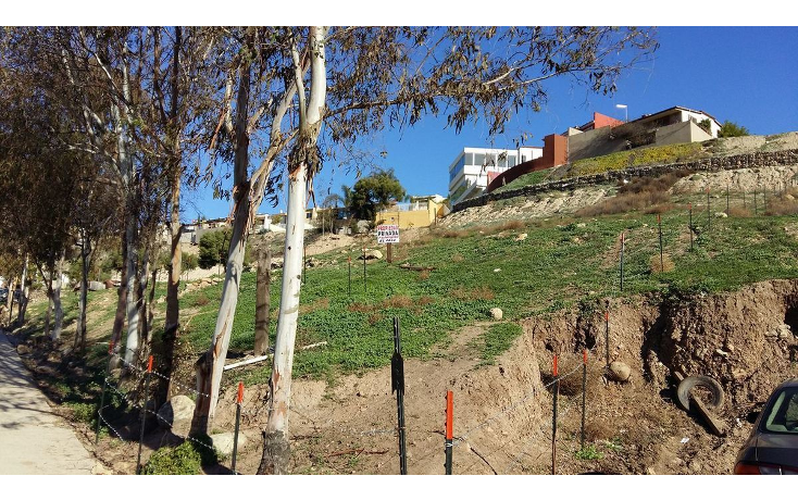 Foto de terreno habitacional en venta en  , buena vista, tijuana, baja california, 1949723 No. 01