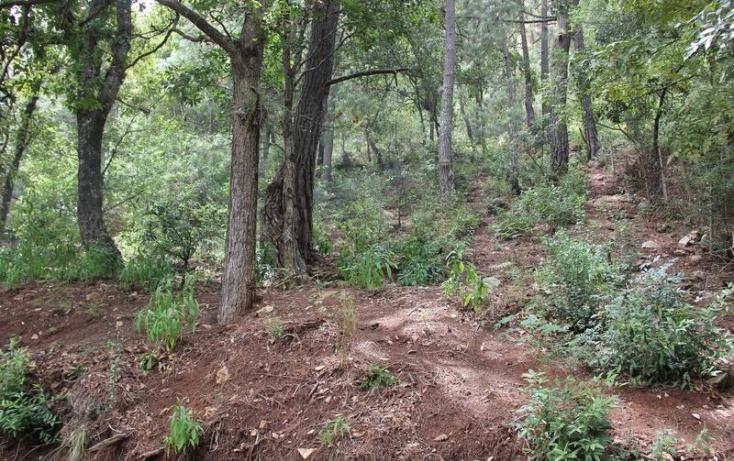Foto de terreno habitacional en venta en buenavista 20, del santuario, san cristóbal de las casas, chiapas, 817101 no 02