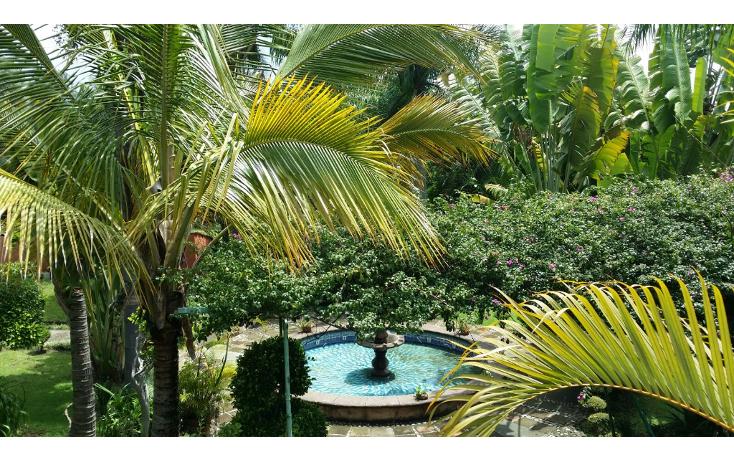 Foto de terreno habitacional en venta en  , buenavista, cuernavaca, morelos, 1541962 No. 01
