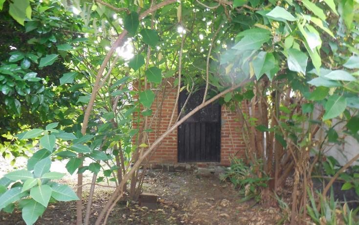 Foto de casa en renta en  , buenavista, cuernavaca, morelos, 1776556 No. 09