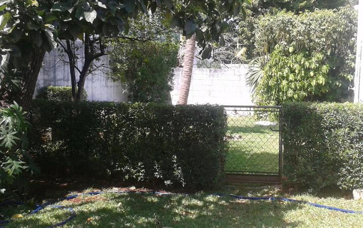 Foto de casa en venta en  , buenavista, mérida, yucatán, 1284629 No. 15