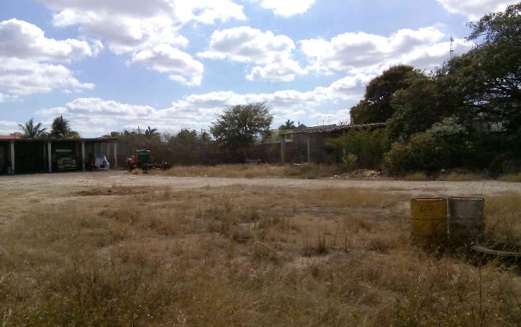 Foto de terreno comercial en venta en  , buenavista, m?rida, yucat?n, 1774588 No. 04