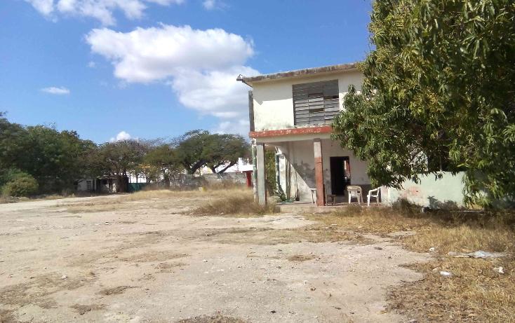 Foto de terreno comercial en venta en  , buenavista, m?rida, yucat?n, 1774588 No. 06