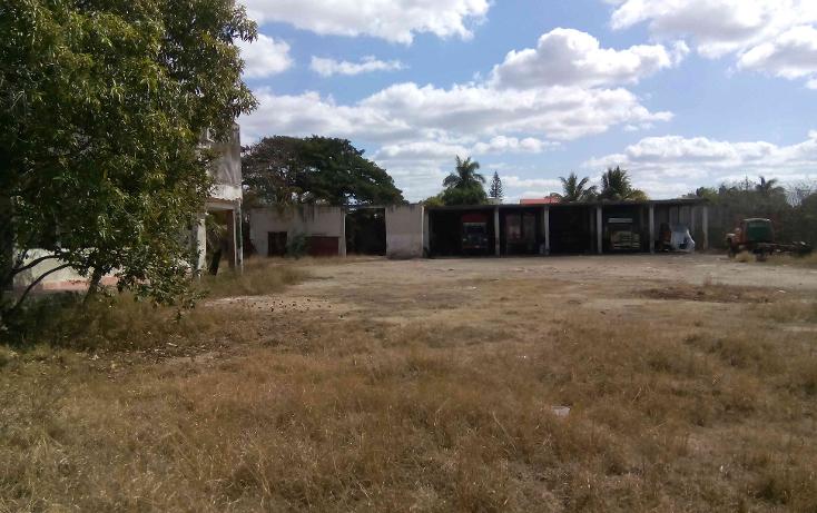 Foto de terreno comercial en venta en  , buenavista, m?rida, yucat?n, 1774588 No. 09