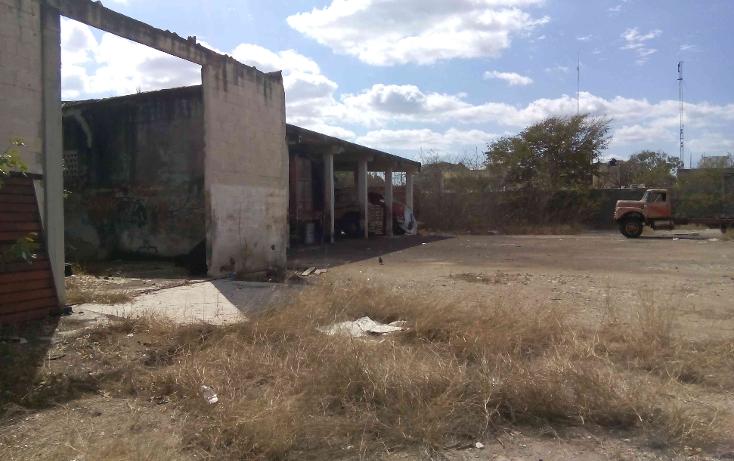 Foto de terreno comercial en venta en  , buenavista, m?rida, yucat?n, 1774588 No. 11