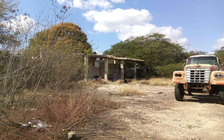 Foto de terreno comercial en venta en  , buenavista, m?rida, yucat?n, 1774588 No. 15