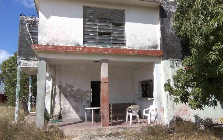 Foto de terreno comercial en venta en  , buenavista, m?rida, yucat?n, 1774588 No. 16