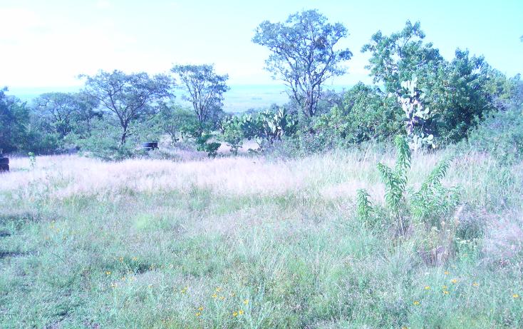 Foto de terreno comercial en venta en  , buenavista, san juan del río, querétaro, 1677506 No. 03