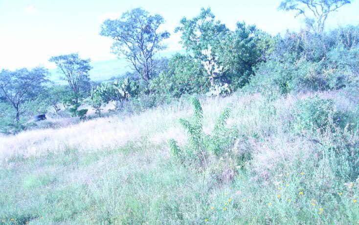 Foto de terreno comercial en venta en, buenavista, san juan del río, querétaro, 1677506 no 04
