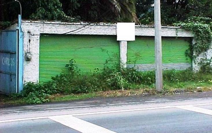 Foto de terreno comercial en renta en  , buenavista, tlajomulco de zúñiga, jalisco, 1927911 No. 06
