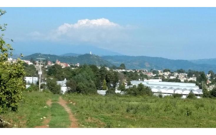Foto de terreno habitacional en venta en  , buenavista, villa guerrero, m?xico, 1339479 No. 01