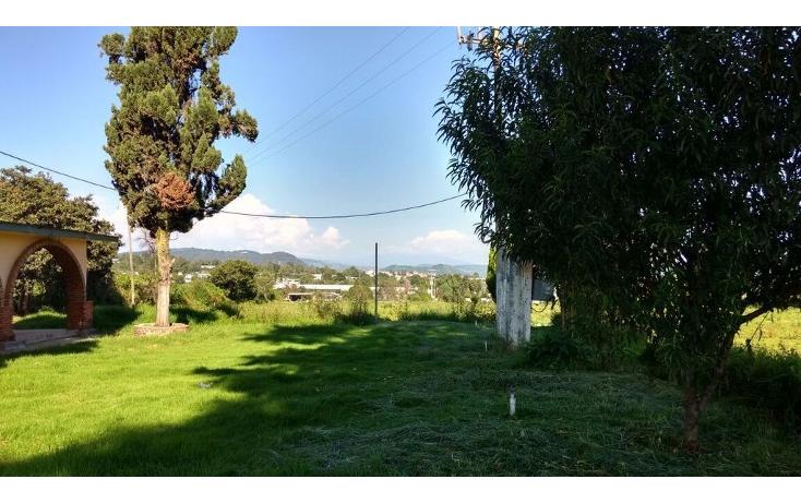 Foto de terreno habitacional en venta en  , buenavista, villa guerrero, m?xico, 1339479 No. 02