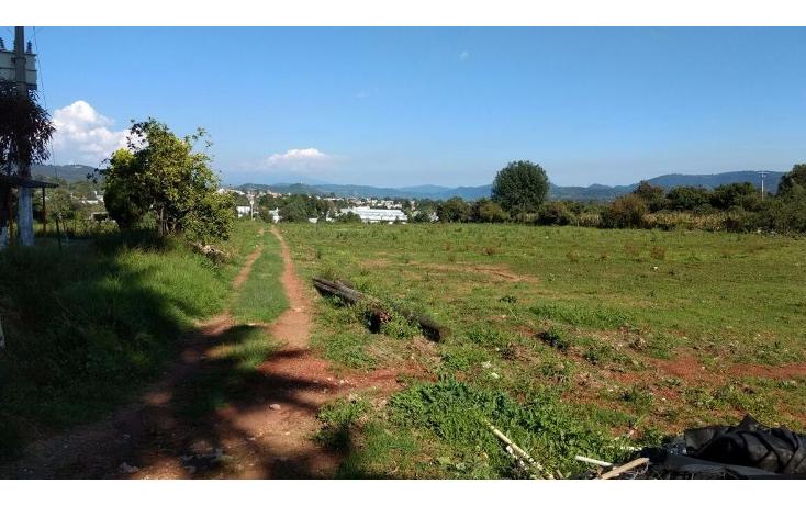 Foto de terreno habitacional en venta en  , buenavista, villa guerrero, m?xico, 1339479 No. 06