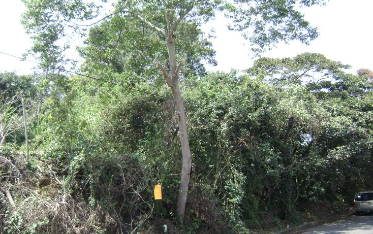 Foto de terreno habitacional en venta en  , buenavista, xalapa, veracruz de ignacio de la llave, 1254859 No. 02