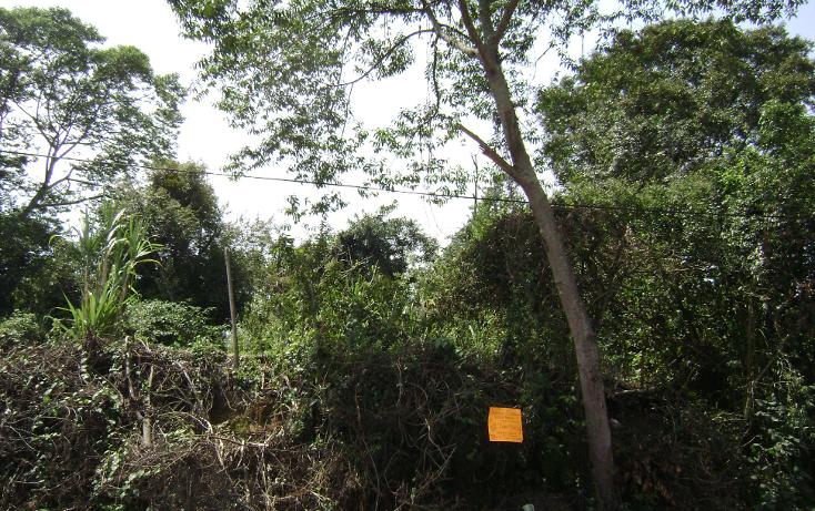 Foto de terreno habitacional en venta en  , buenavista, xalapa, veracruz de ignacio de la llave, 1254859 No. 03