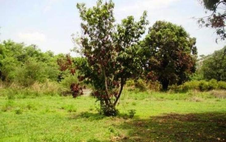 Foto de terreno habitacional en venta en  , buenavista, yautepec, morelos, 1751516 No. 04