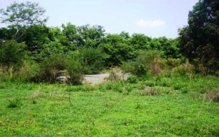 Foto de terreno habitacional en venta en  , buenavista, yautepec, morelos, 1751516 No. 06