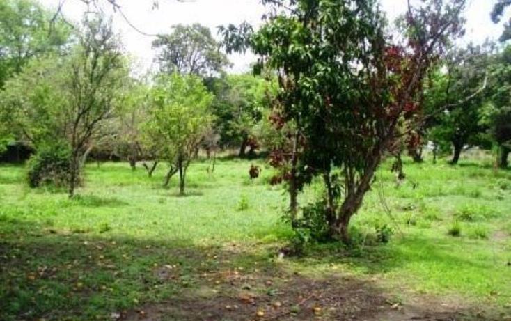 Foto de terreno habitacional en venta en  , buenavista, yautepec, morelos, 1751516 No. 07