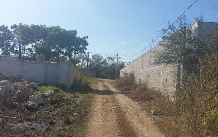 Foto de terreno habitacional en venta en, bugambilias, berriozábal, chiapas, 1626149 no 01