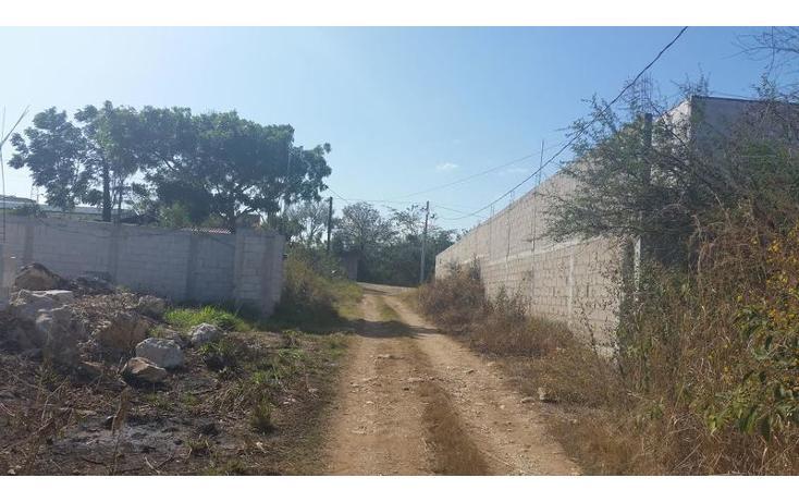 Foto de terreno habitacional en venta en  , bugambilias, berriozábal, chiapas, 1626149 No. 02
