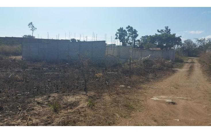 Foto de terreno habitacional en venta en  , bugambilias, berriozábal, chiapas, 1626149 No. 04