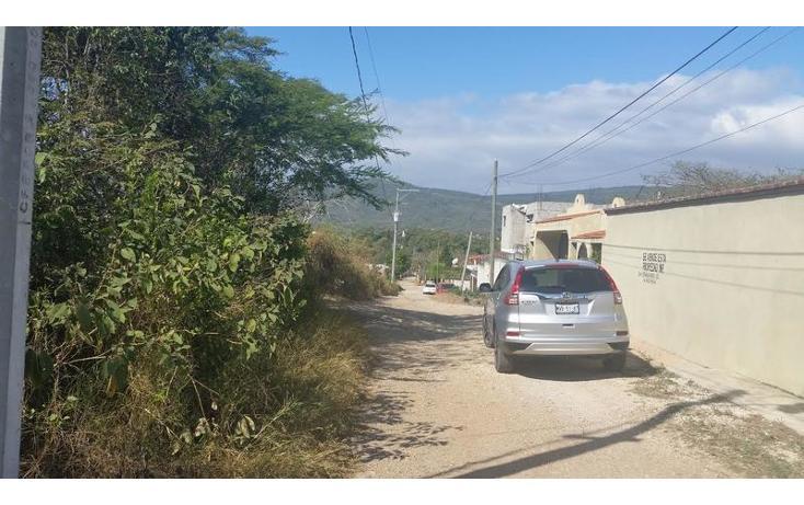 Foto de terreno habitacional en venta en  , bugambilias, berriozábal, chiapas, 1626149 No. 05