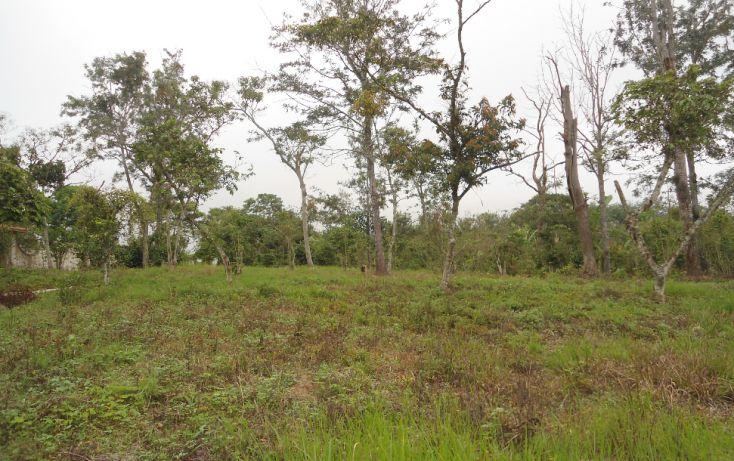 Foto de terreno habitacional en venta en, bugambilias del sumidero, xalapa, veracruz, 1290477 no 01