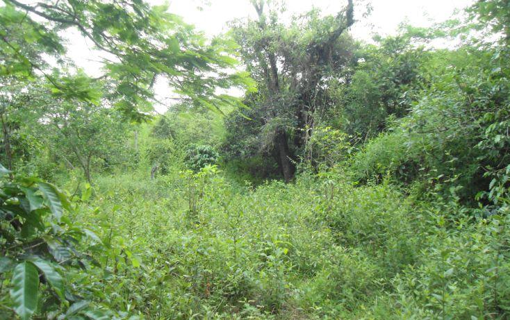 Foto de terreno habitacional en venta en, bugambilias del sumidero, xalapa, veracruz, 1290477 no 03