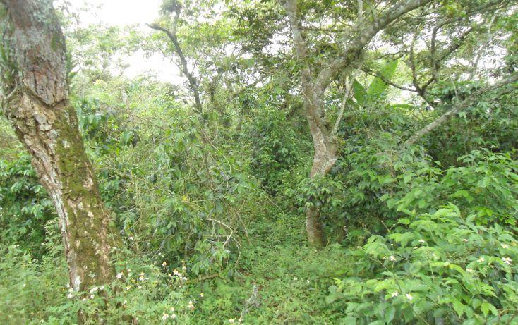 Foto de terreno habitacional en venta en, bugambilias del sumidero, xalapa, veracruz, 1290477 no 05